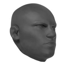 Lapa ve tvaru hlavy